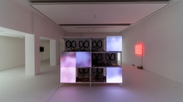 Spectrum Version 2.2, Installation View